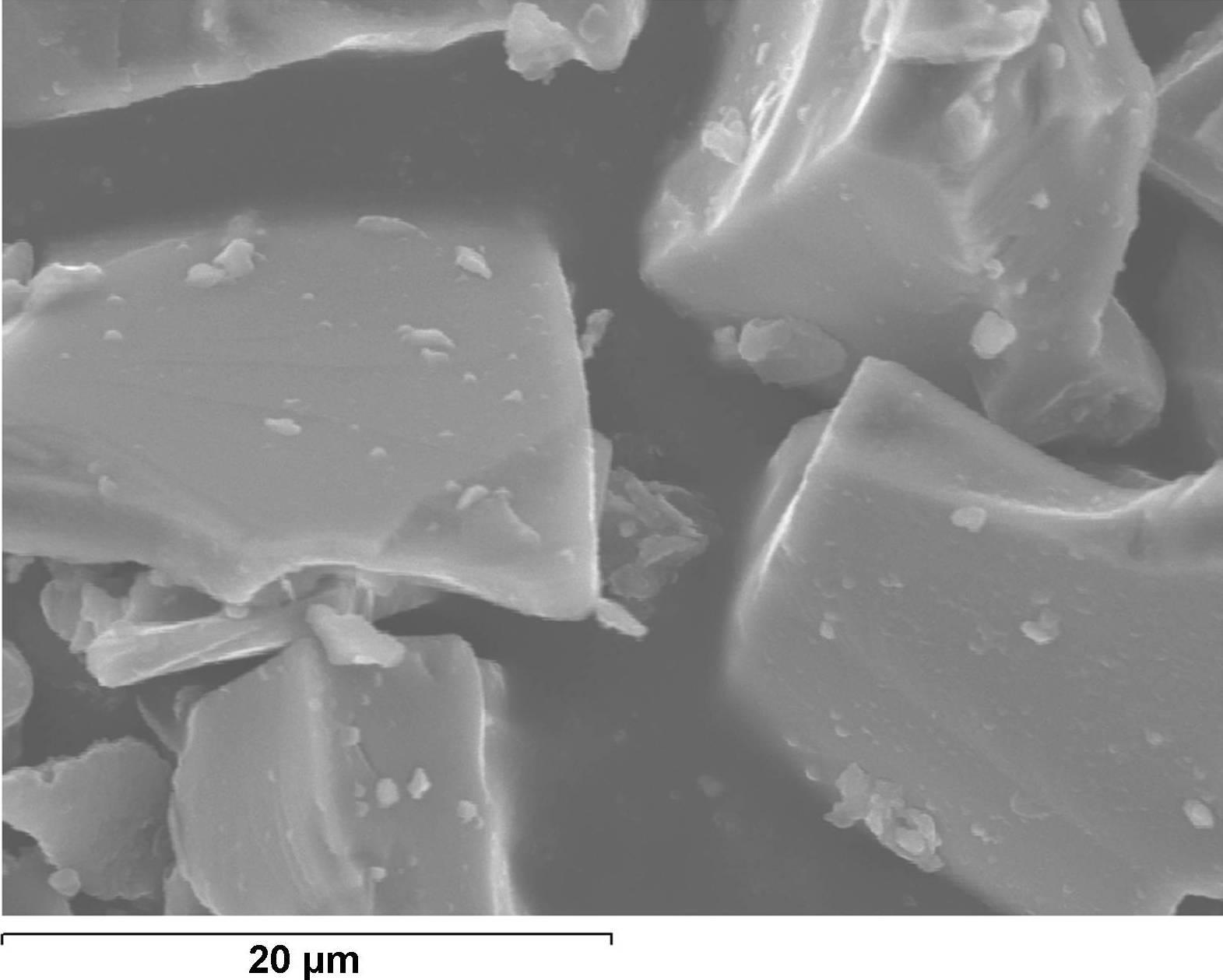 Micrografia Nº1: Detall de partícules de SiC