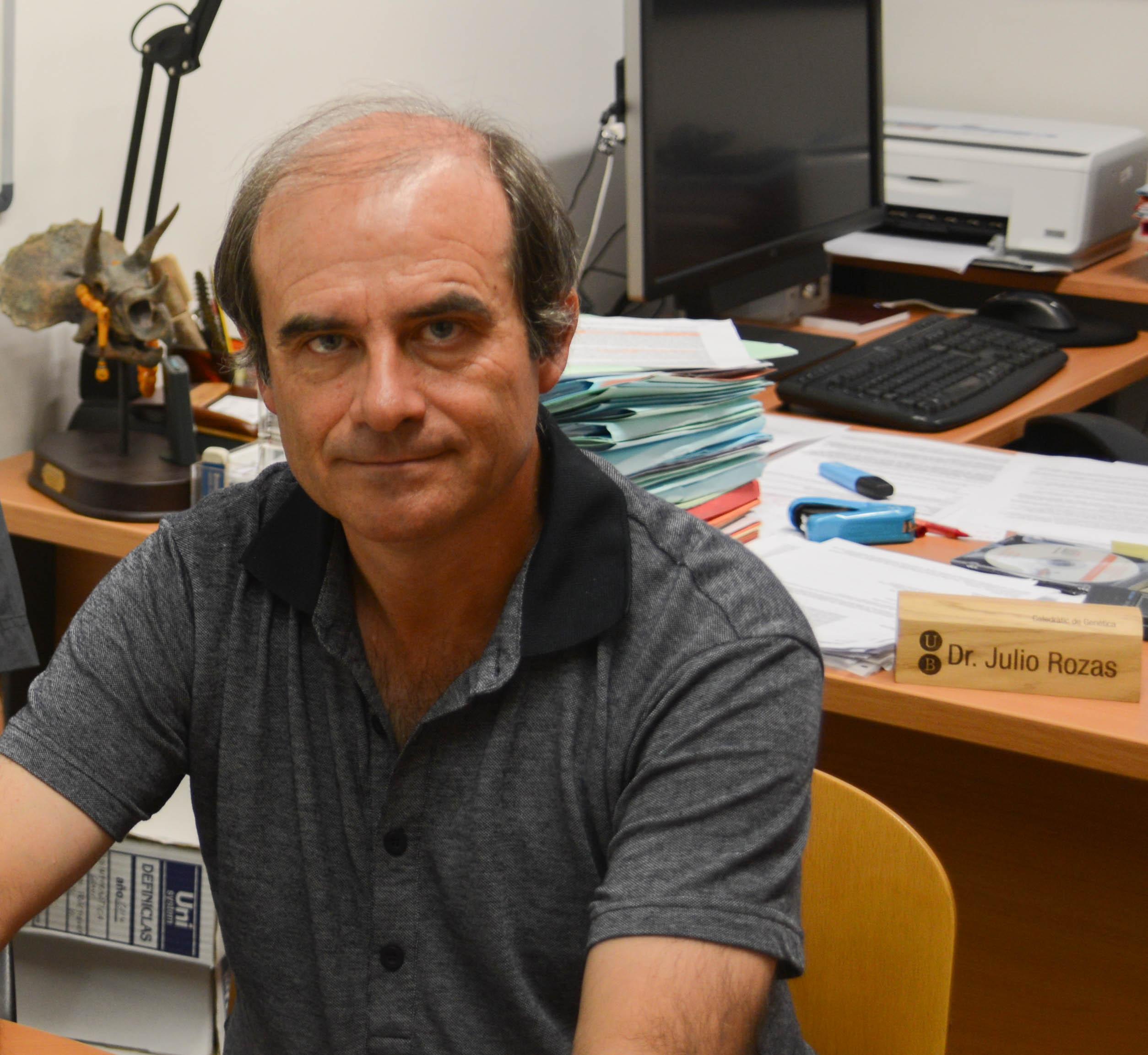 Julio Rozas