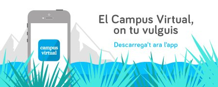 App Campus Virtual UB