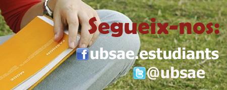 Xarxes socials SAE