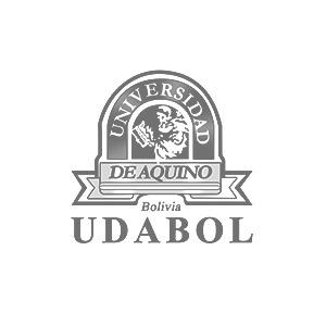15.-UDABOL-gris