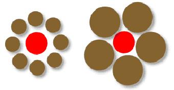 6 1 Las Ilusiones Perceptivas Psicologia De La Percepcion Visual