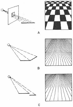 8 1 tradiciones teóricas en la percepción del espacio visual