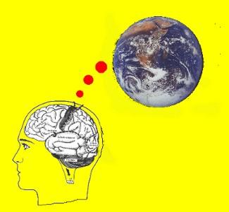 9 la percepción del movimiento psicologÍa de la percepciÓn visual