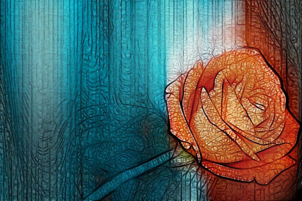 Imatge rosa