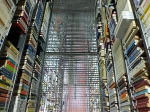 La Biblioteca durante el siglo XX