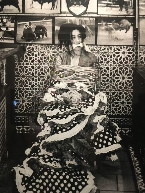 Prohibido el cante. Pilar Albarracín