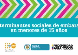 """Publicació """"Determinantes sociales del embarzao en menores de 15 años"""""""