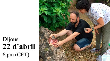 Converse: Quan l' arqueologia i la gastronomia es troben: experiències al voltant de l'espai multidisciplinar a ElBullifoundatio