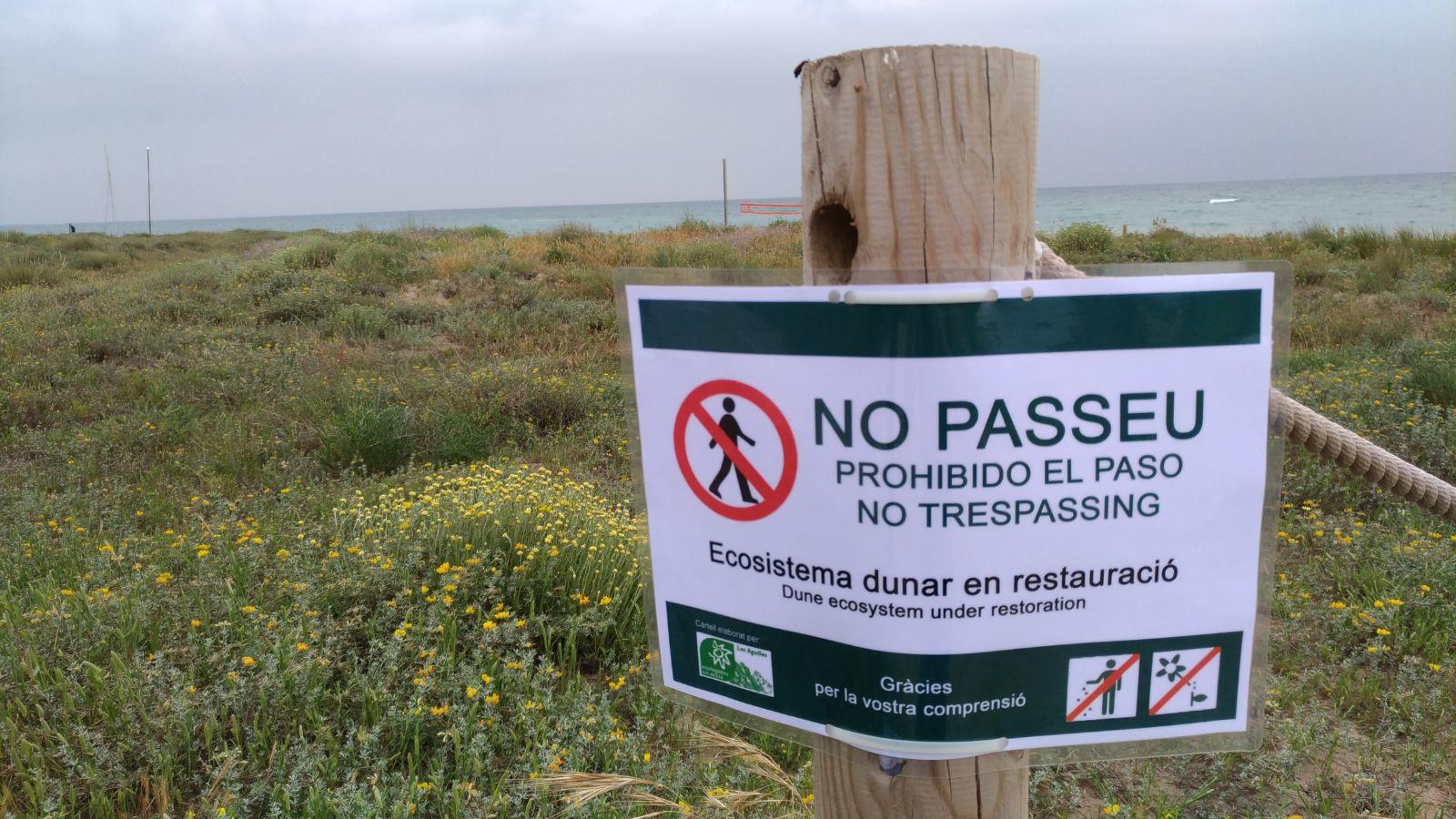 Senyalització de les dunes litorals de Gavà, on prohibeixen el pas