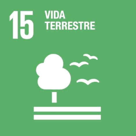 ODS 15: Vida terrestre