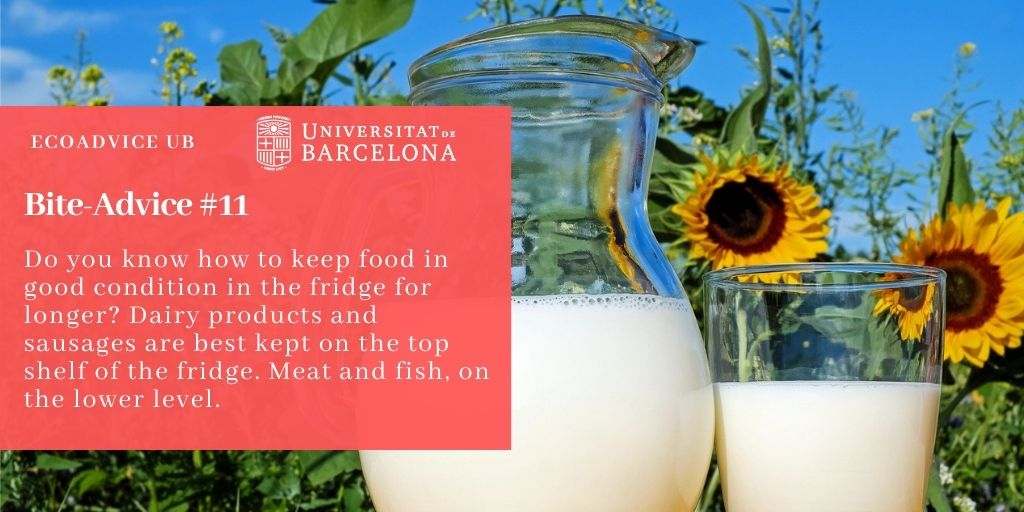 Do you know how to keep food in good condition in the fridge for longer? Dairy products and sausages are best kept on the top shelf of the fridge. Meat and fish, on the lower level.