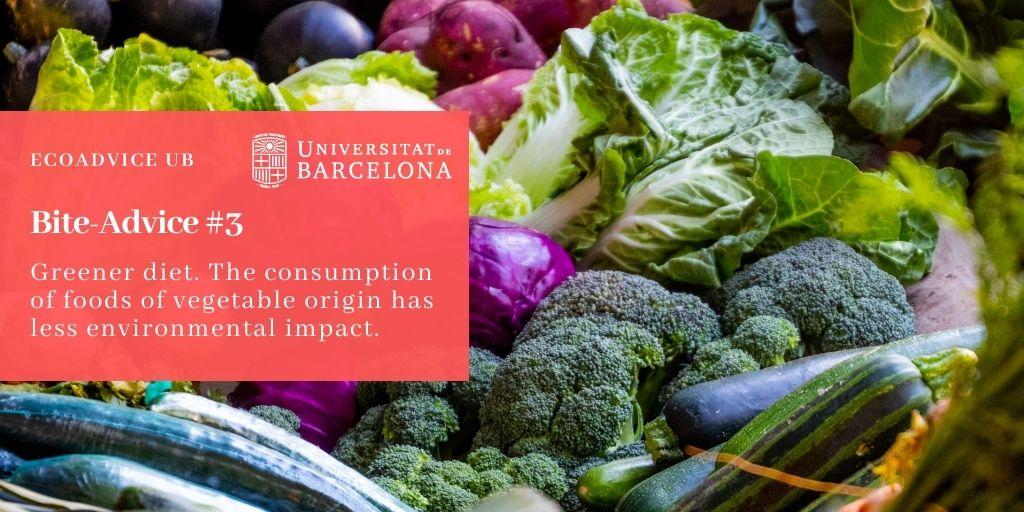 Greener diet. The consumption of foods of vegetable origin has less environmental impact.