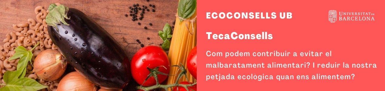 Ecoconsells Tecaconsells capçalera