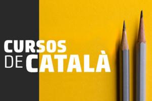 cursos-2017-2018-2n-sem