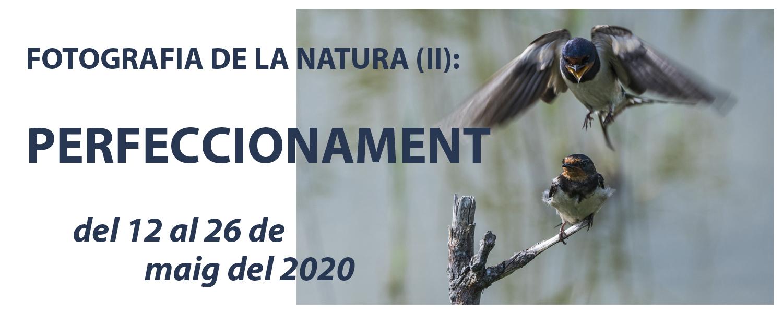 Curs de Fotografia de la Natura (II): Perfeccionament - maig de 2021