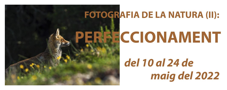 Curs de Fotografia de la Natura (II): Perfeccionament - maig de 2022