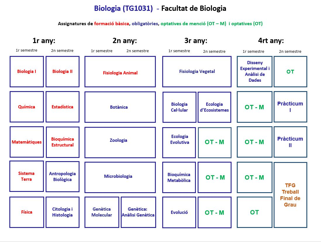 Quadre d'assignatures de Biologia