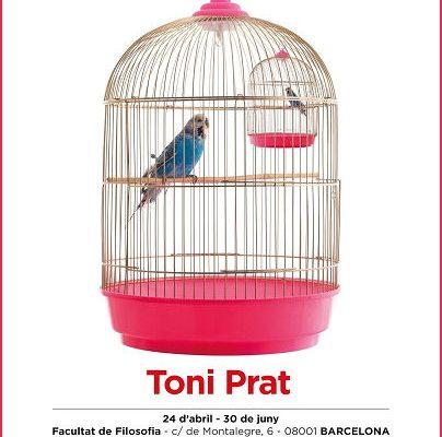 Mostra «Poesia filosòfica… visual» de l'artista Toni Prat
