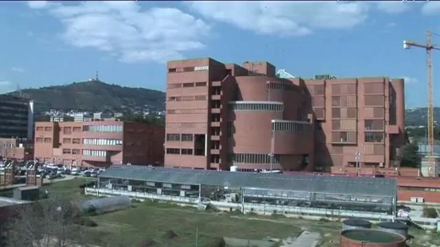 巴塞罗那大学:概述