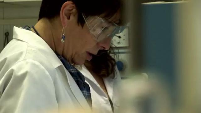 Facultat de Química 2011. Un any en retrospectiva