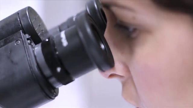 Nanofármacos para combatir la malaria