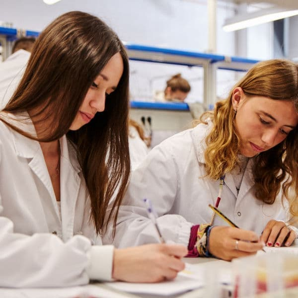 he University of Barcelona offers you 48 doctoral programs so that you can start your career in the world of research.