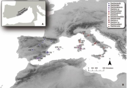 The new research is focused on the tectonic collision in the Western Mediterranean.