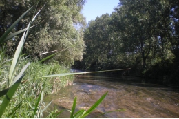 River salinity can be natural, caused by the geology of the area or the climatology, or anthropogenic. (Image: the Llobregat river in Balsareny / FEM Research Group-UB)