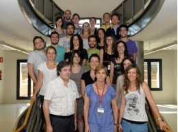 The research team that Dr Jordi Alberch leads at the UB.