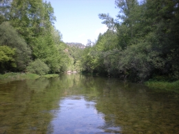 Increased water salinity could have very high economic costs due to loss of ecosystem services and direct costs related to water treatment for human consumption. (Image: the Llobregat river in Berga / FEM Research Group-UB)