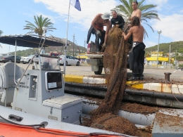 The findings show that bottom-trawling is still illegally done in the Medes Islands