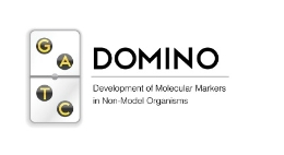DOMINO is a new bioinformatics tool to develop molecule markers à la carte out of genomic data.