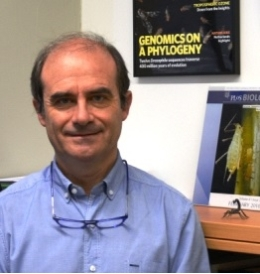 AdaptNET is coordinated by Professor Julio Rozas, from the Faculty of Biology and the Institute for Research on Biodiversity of the University of Barcelona (IRBio).
