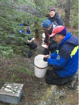 The experts Joan Real and Antonio Hernández Matías also collaborate with the team of Dr Charles Krebs in the boreal forests of Kluane (Yukon, Canada). (image: Joan Real, Conservation Biology Group, UB-IRBio)
