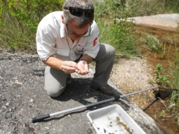 Developing a monitoring program for invertebrates with a forest ranger of the Natural Park of Sant Llorenç del Munt i l'Obac (image: Vicenç Bros)