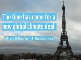 The United Nations Climate Change Conference (COP21), held in Paris in 2015, is a world reference in the fight against climate change (image: World Wildlife Fund, WWF)