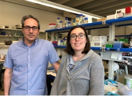 Bru Cormand, head of the Neurogenetics Research Group at the Faculty of Biology, and Roser Corominas, new tenure-track 1 lecturer at the University of Barcelona.