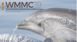 The 1st World Marine Mammal Conference WMMC 2019 will take place from the 9th to the 12th of December in Barcelona, under the organisation of the University of Barcelona and the entity Submon.