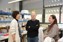 From left to right, the experts Susana Balcells, Daniel Grinberg and Roser Urreizti at the Faculty of Biology of the University of Barcelona.